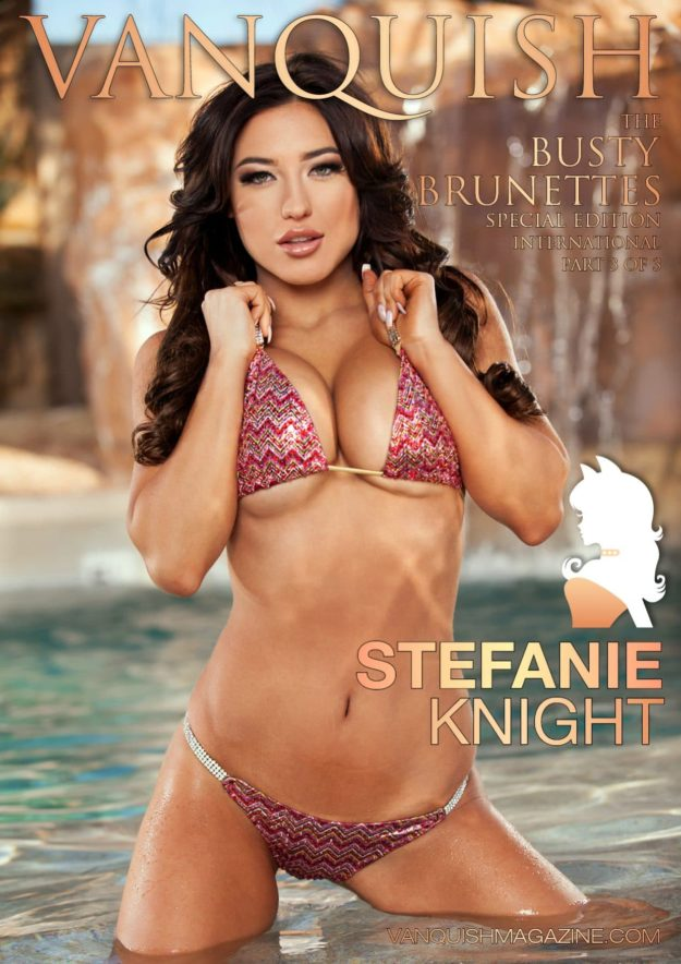 Busty Brunettes Stefanie Knight